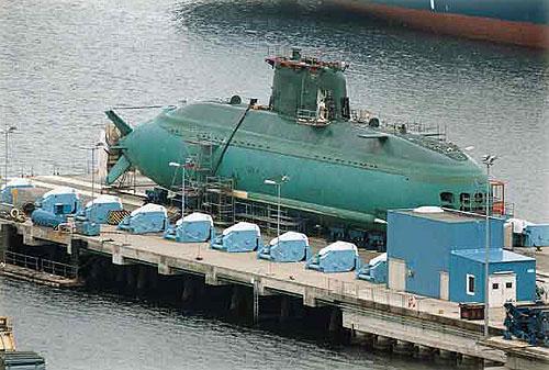 dolphin-6.jpg