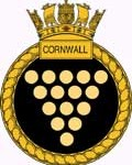 a-cornwall-seal