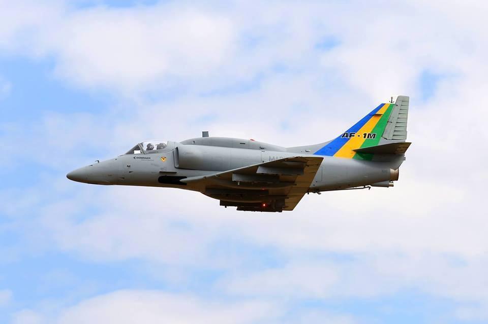 AF-1M (1)