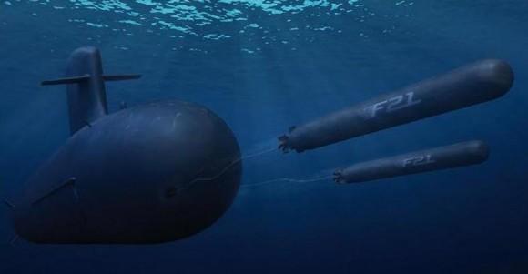 torpedo F21 - imagem DCNS via DGA
