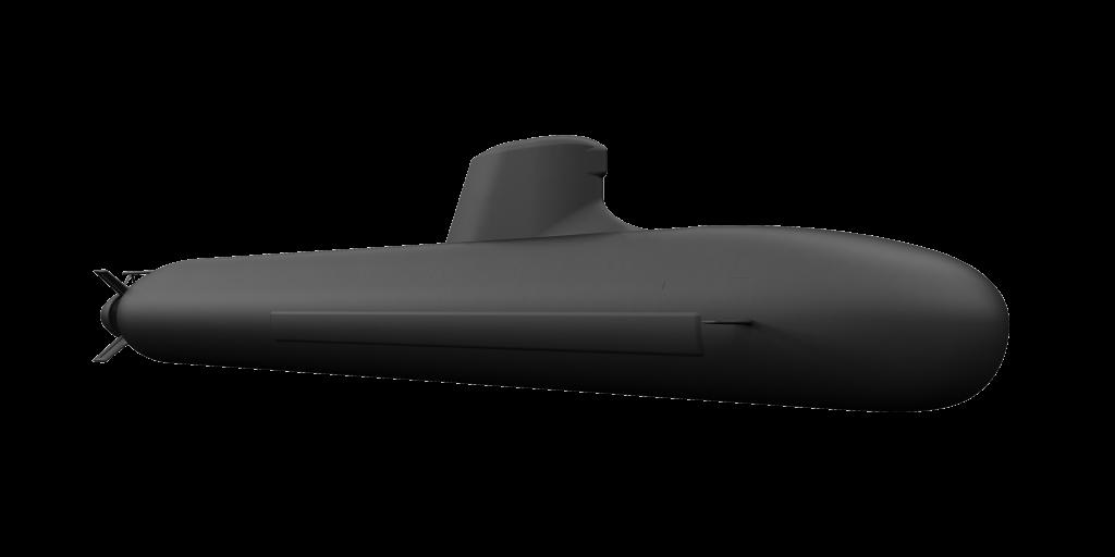 Shortfin-Barracuda