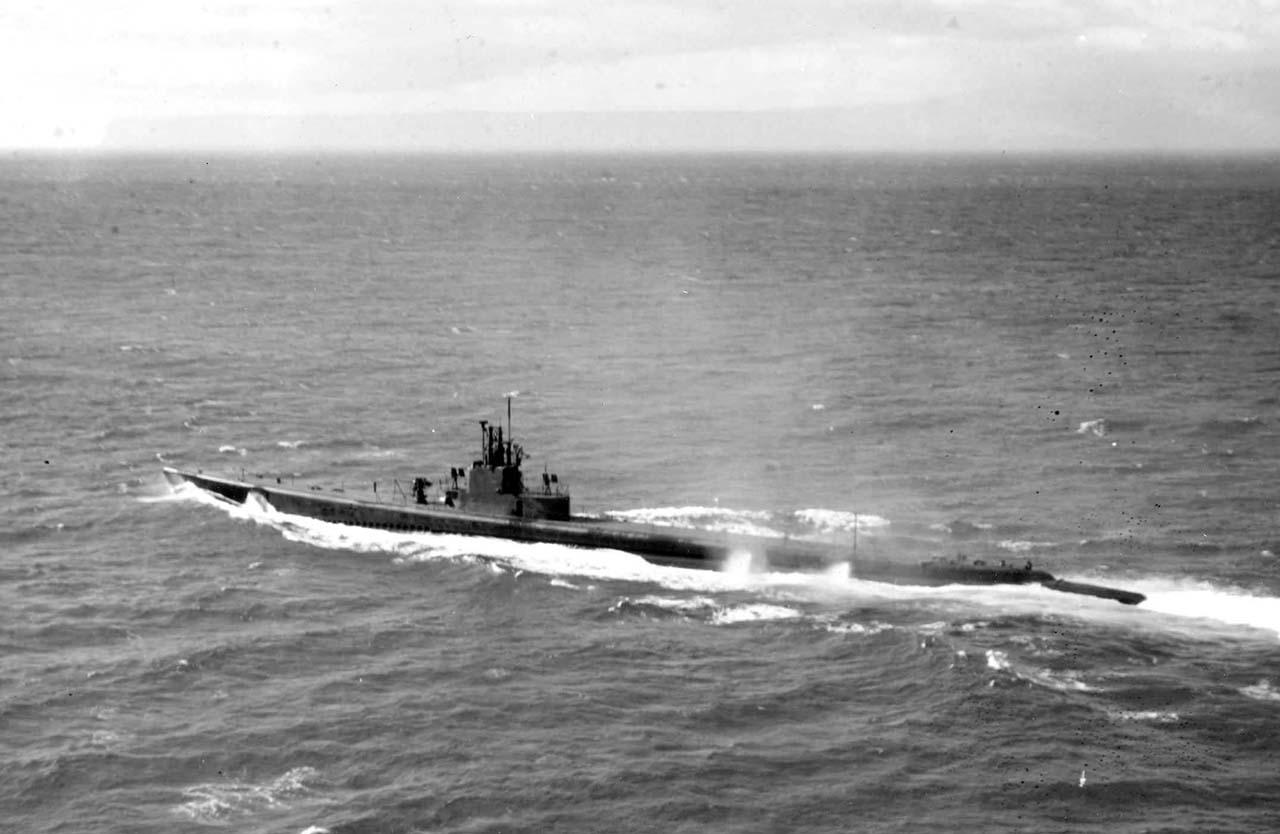 Em 1963 a Flotilha de Submarinos resumia-se a dois navios (Humaitá e Riachuelo) empregados como unidades auxiliares de adestramento das unidades de superfície. A MB não possuía torpedos com cabeça de combate e teve que improvisar durante a crise da lagosta. Mas após o episódio a Flotilha foi completamente remodelada