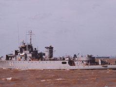 ARA King - P21